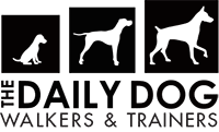 The Daily Dog Walking & Training